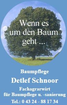 Baumpflege_Schnoor