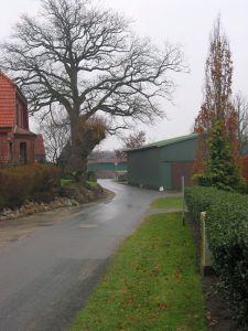 Gemeinde_05